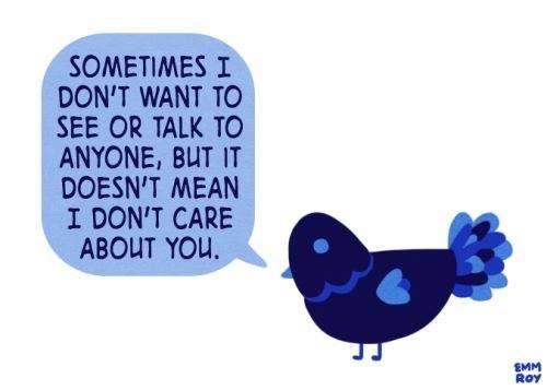 Introvert, Dear (@IntrovertDear)   Twitter