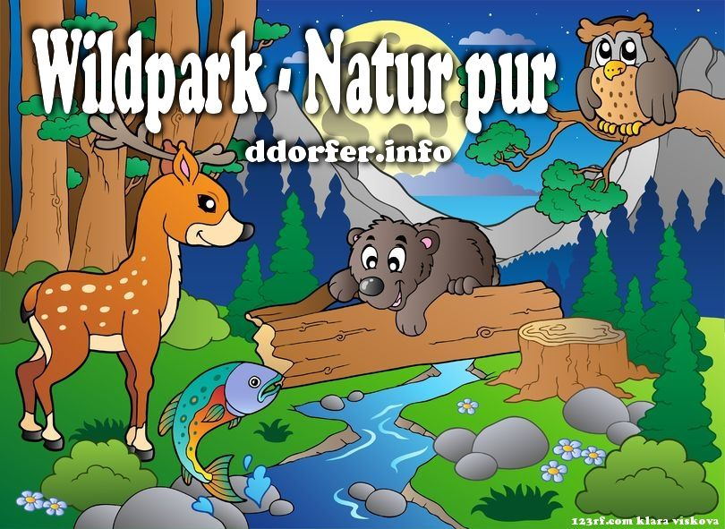 """Biotop-Wildpark Anholter Schweiz im """"Dreiländereck"""" Münsterland, Niederrhein und Niederlande.  http://duesseldorf-fuer-kinder.de/ausflugsziele/eintrag/anholter-schweiz"""