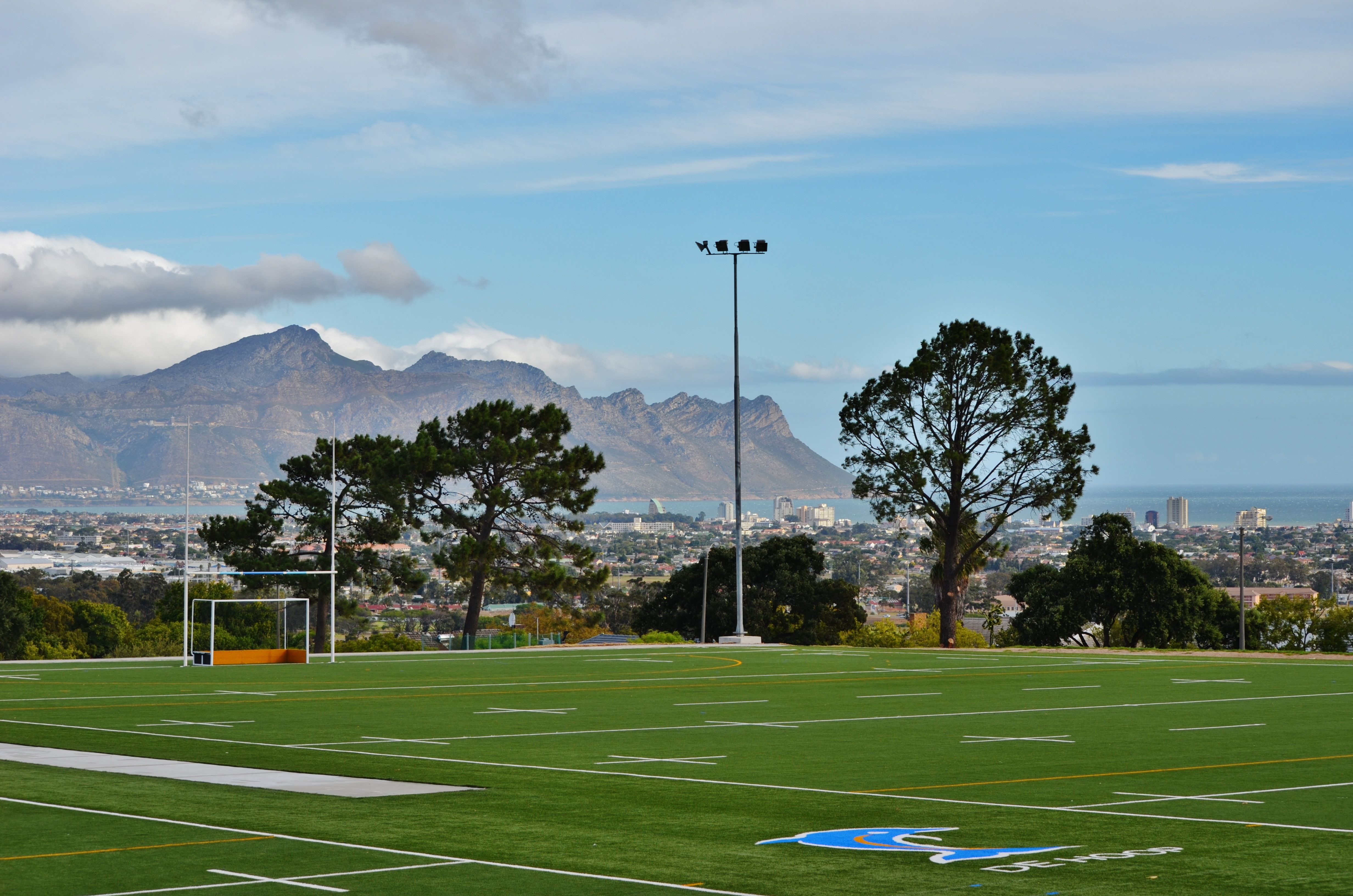 One synthetic pitch for all sports should be more than