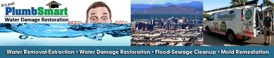 At PlumbSmart, A professional will ensure that they help you to deal with the correct type of water problem in the correct way. They will make sure that they help you to restore your home to how it was before you had to face such a problem. http://waterdamageinscottsdaleaz.com/