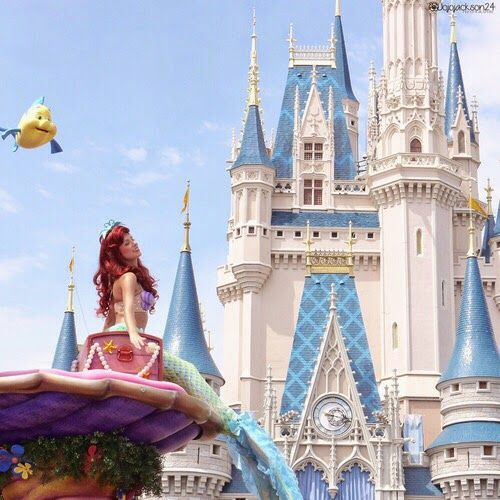 Somente um Doce Sorriso: Disneyland