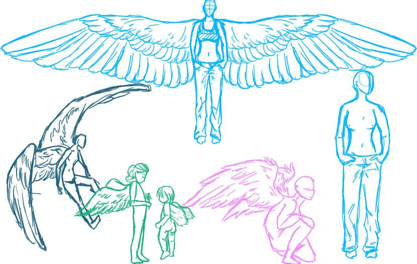 Pin By Art Resources On Wings Wings Sketch
