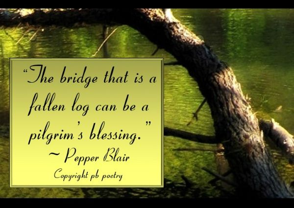Wwwlove Quotes Simple Pilgrim's Blessingpepper Blair Httpwww.lovepbpoetry