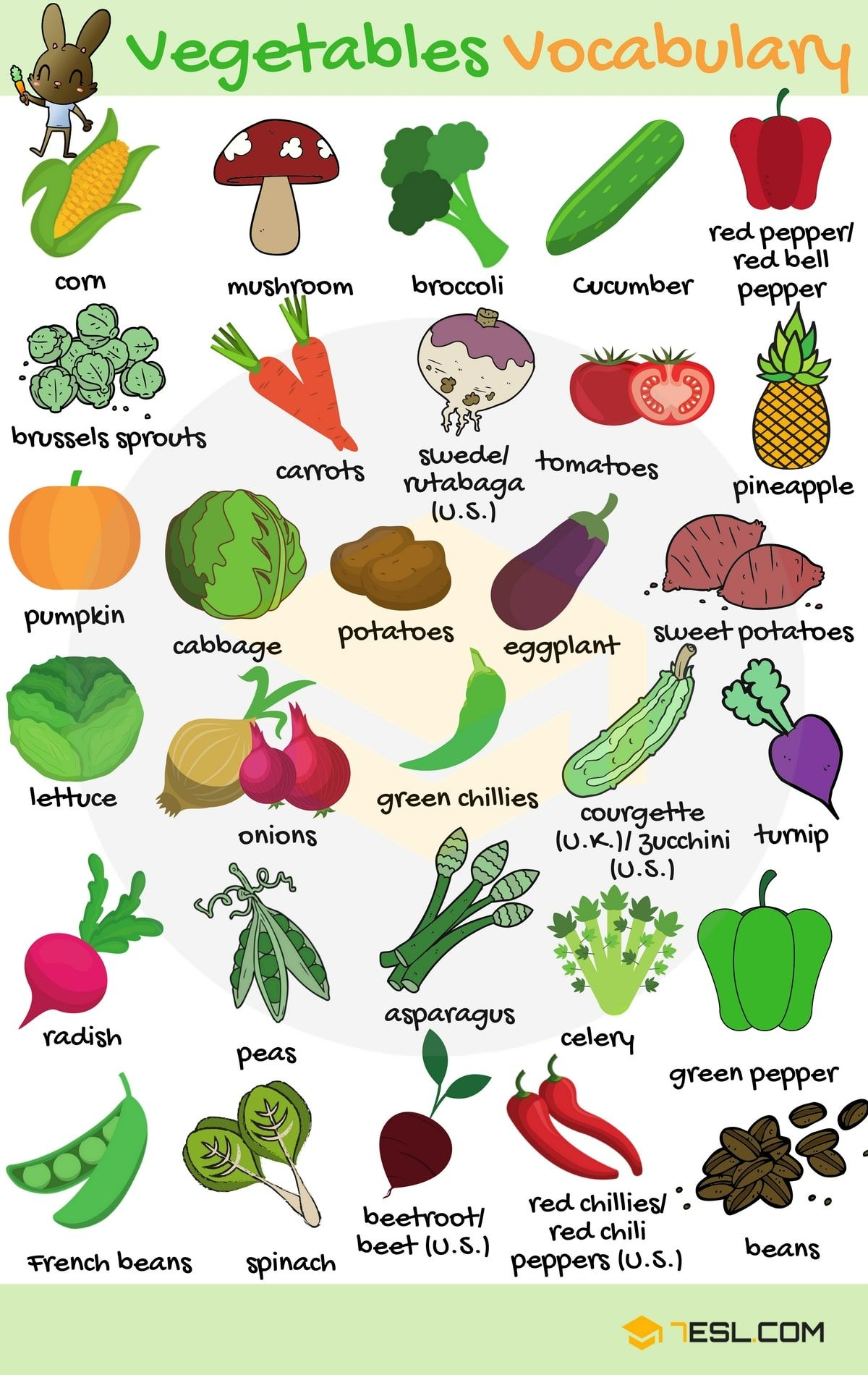 Vegetables Vocabulary In English English Vocabulary English