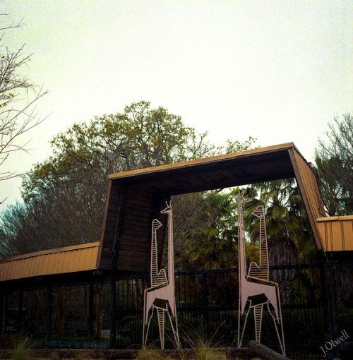cd17637a258b15fa478205d9b2fbd573 - Louisiana Purchase Gardens & Zoo Monroe La
