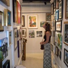 The Art Cellar Is An Eclectic Fine Art And Craft Gallery Located
