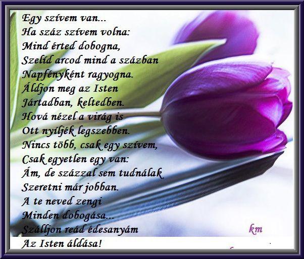szülinapi idézetek anyukámnak Anyák napja,Elmesélem,hogy szeretlek,Az én anyukámnak a