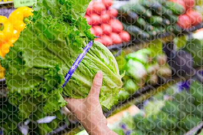 Wasting Your Money Going All Organic?  We've spent the extra dollar to reap in the benefits for organic food. But sometimes we may pay for empty promises.