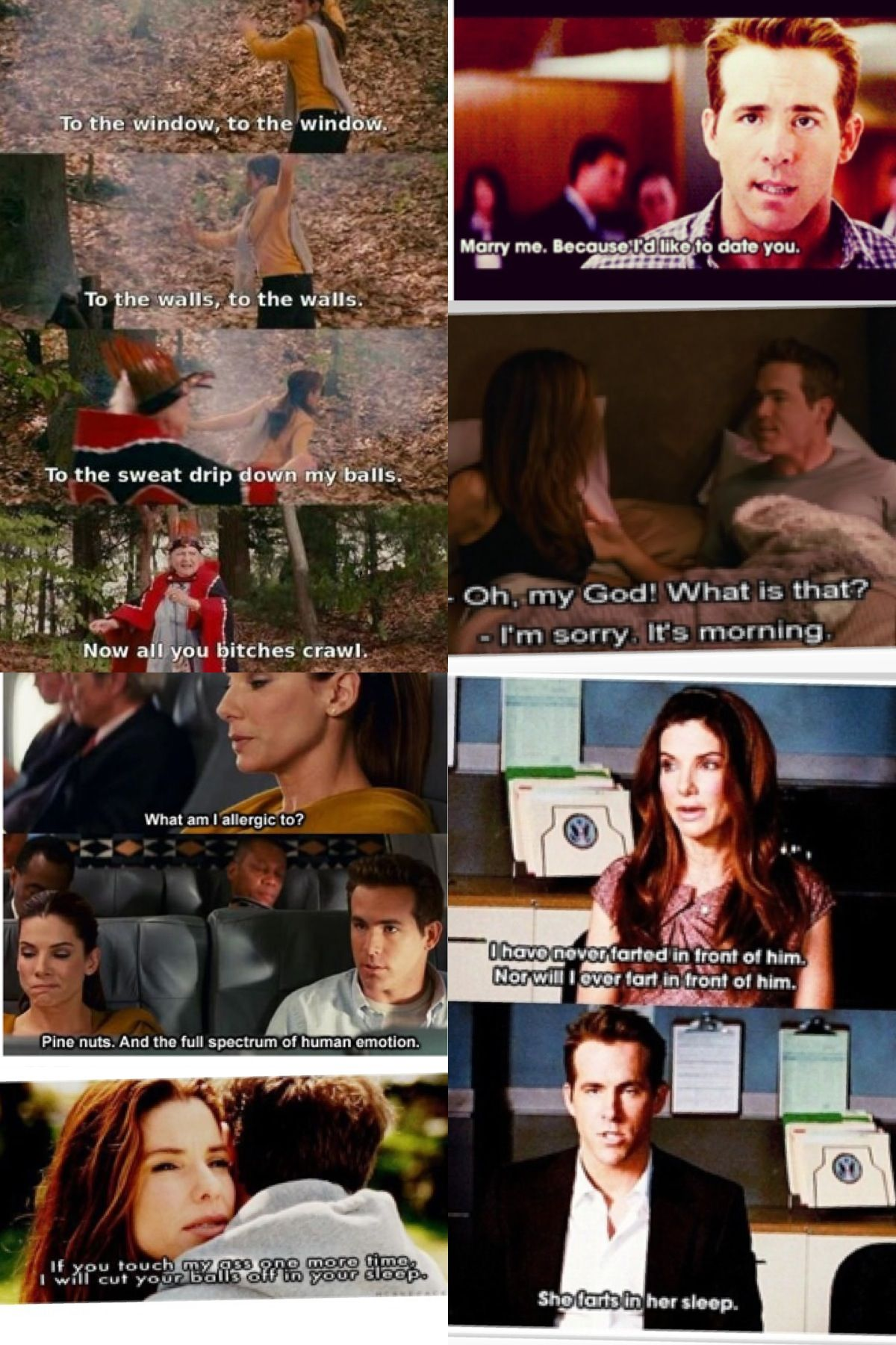 the proposal a a a quotes a pinterest proposals movie and tvs