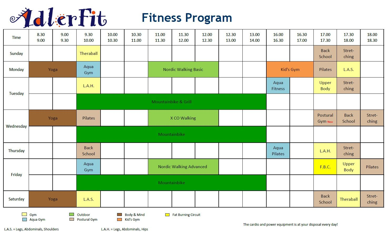 fitness program at home pdf