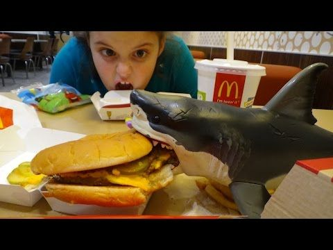 Feeding My Pet Shark
