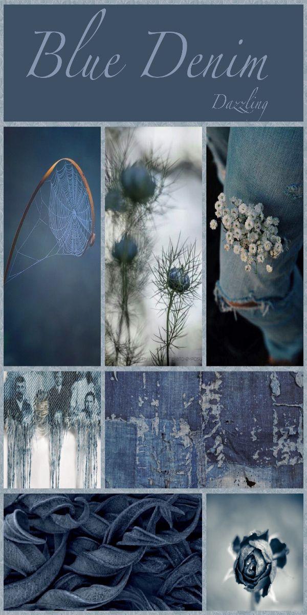 Blue Jean Clasico