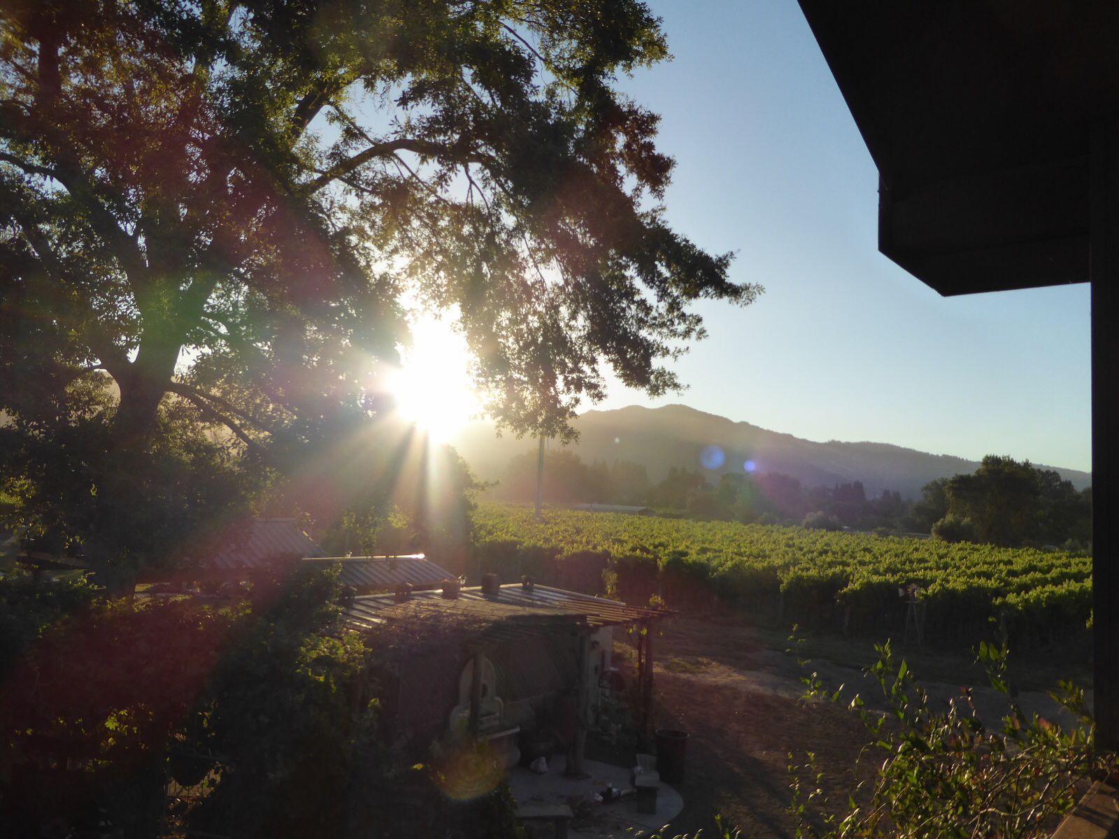 Santa Rosa, Ca sunrise