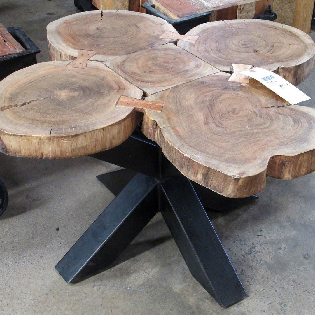 Coffee Table Made With Slices Of A Whole Tree Trunk Revealing The
