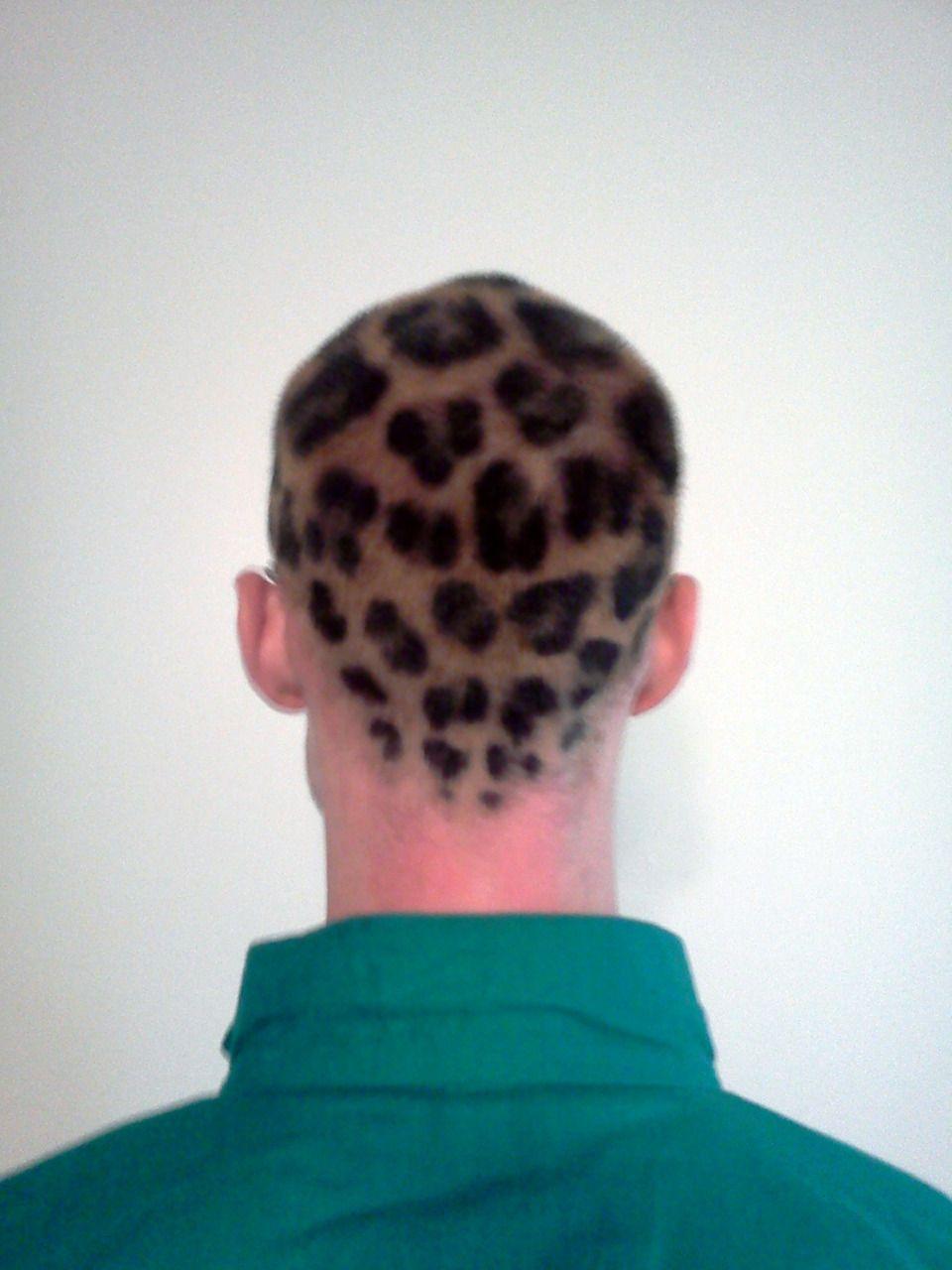 Spotted Leopard Print Hair Leopard Hair Bald Hair