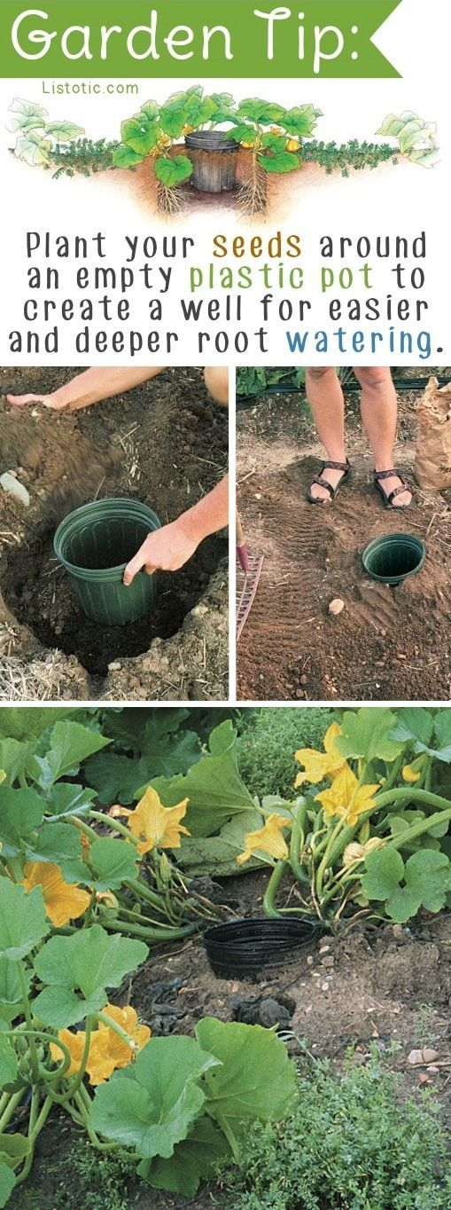 DIY Garden Idea for vegetables, plants or flowers. -- Easy DIY gardening tips and ideas for beginners and beyond! Tips and tricks for your flower or vegetable garden, or for your front or backyard landscaping design. A few garden projects and ideas you can do for cheap! Listotic.com