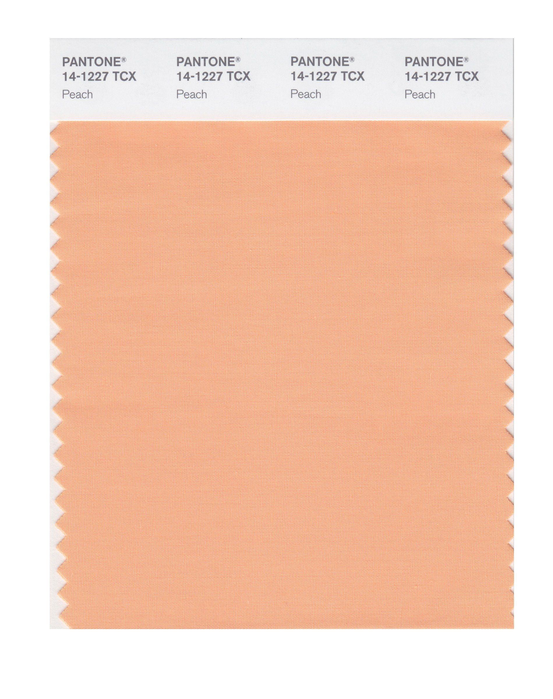 Pantone Smart 14 1318x Color Swatch Card Peach Color Swatch Light Spring Colors Swatch