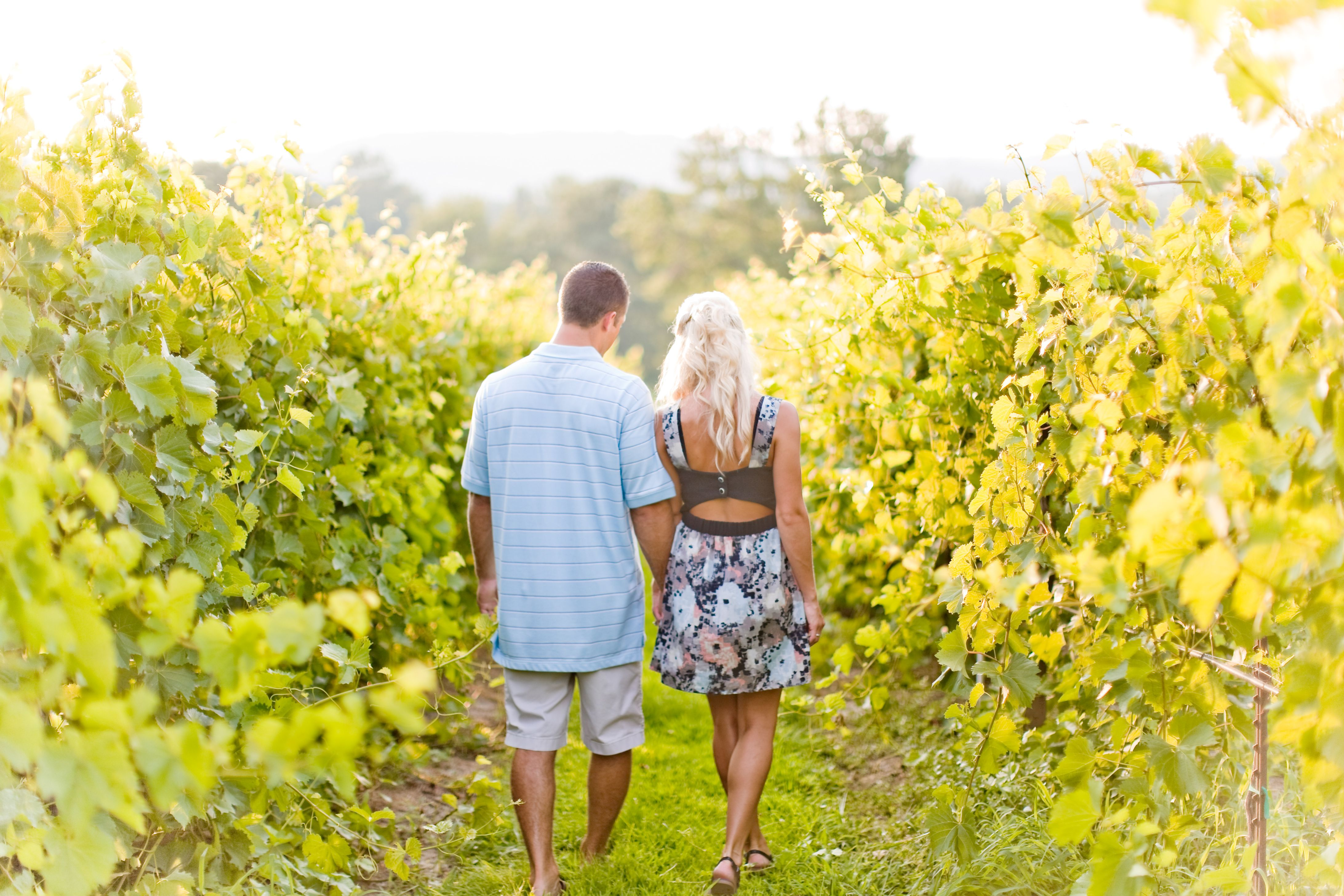 Engagement Pictures at the Winery