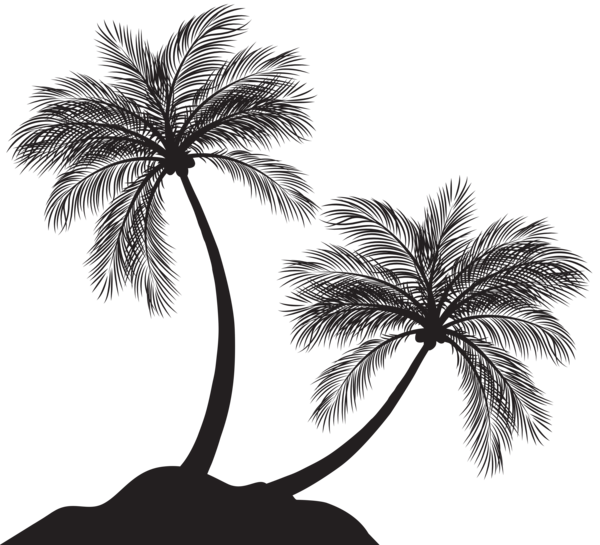 Two Palm Trees Silhouette Png Clip Art Palm Tree Silhouette Tree Silhouette Silhouette Png