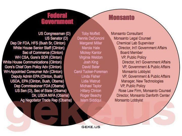 How does the government influence our daily lives?