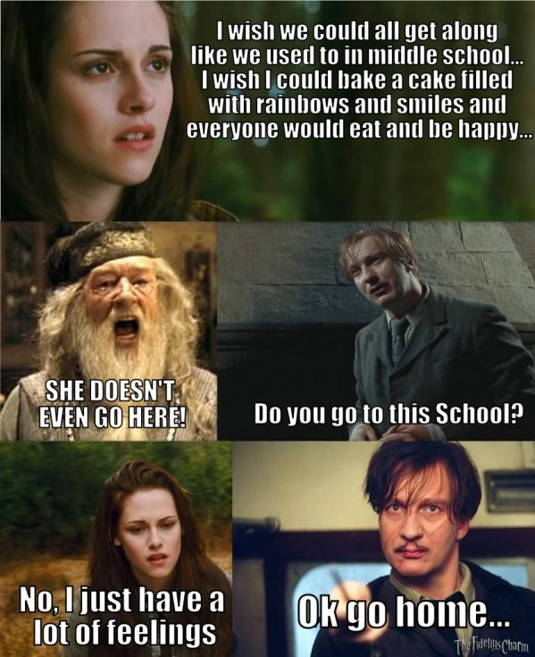 Harry Potter Mean Girls Harry Potter Funny Mean Girls Harry Potter Jokes