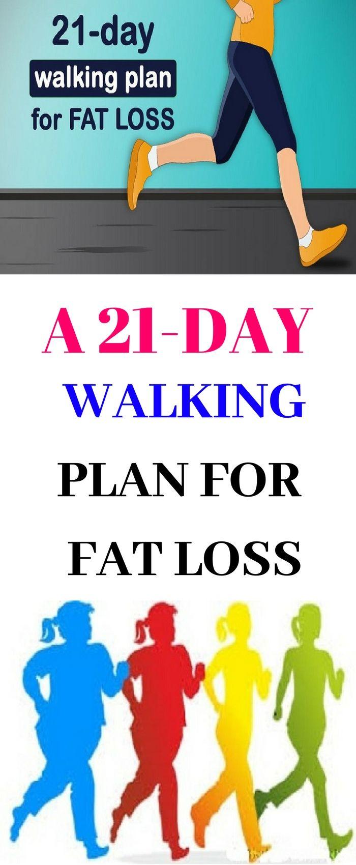 Diet plans to improve health photo 1