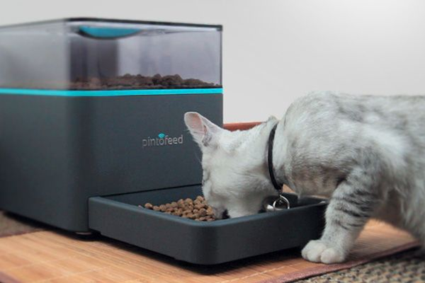 The Pintofeed is an intelligent, Wi-Fi-connected pet feeder that's dialed in to smartphones and social media.