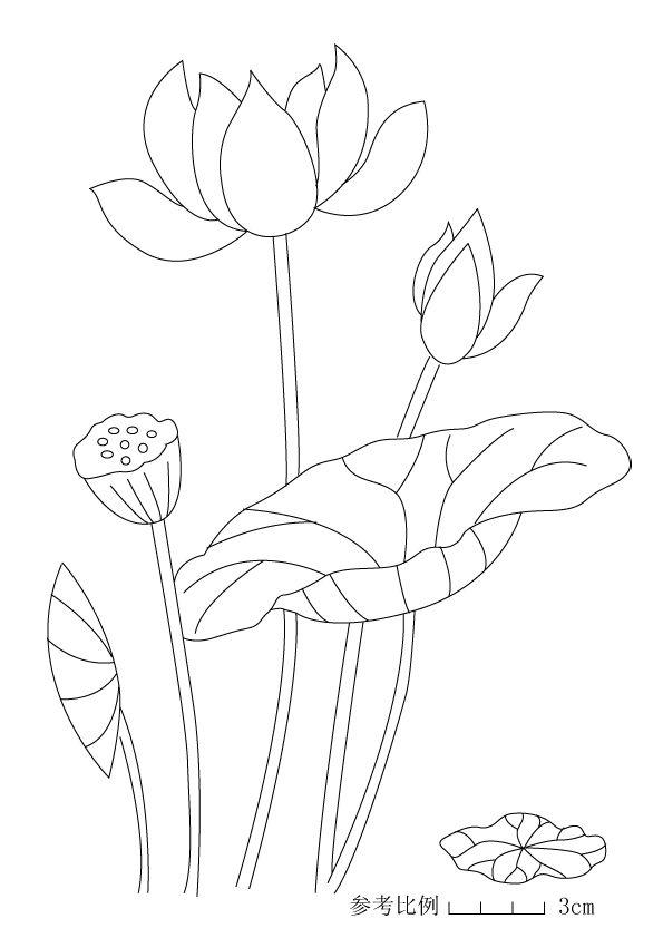转载 荷花大包 附图纸 小小 新浪博客 Flower Drawing Lotus Art Japanese Embroidery