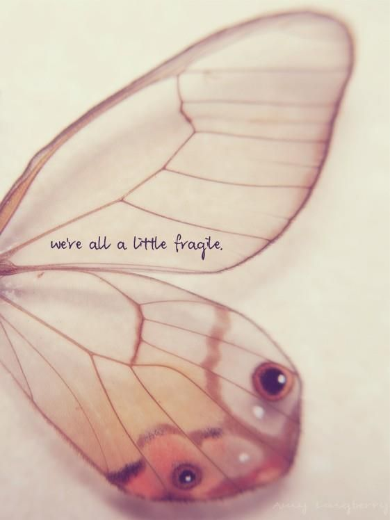 We are all a little fragile.  Be gentle with yourself.
