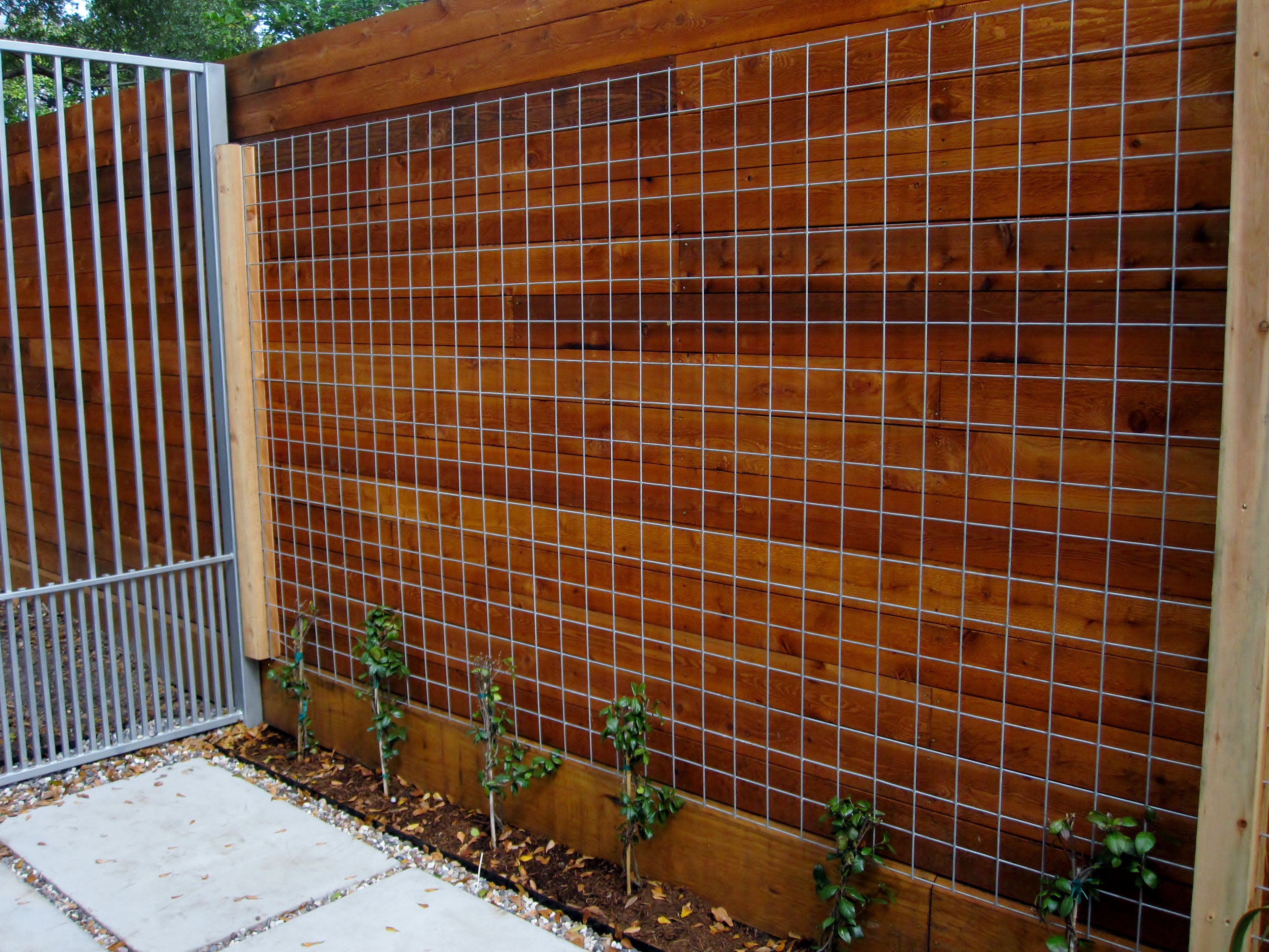 Welded wire cattle panels as a trellis for vines. | Outdoorsy ...