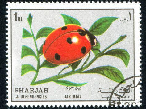Moth Postage Stamps Ladybugs Rocks Ladybug Koi Lady
