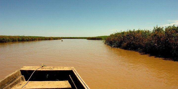 Bolivian Amazon, Bolivia, South America