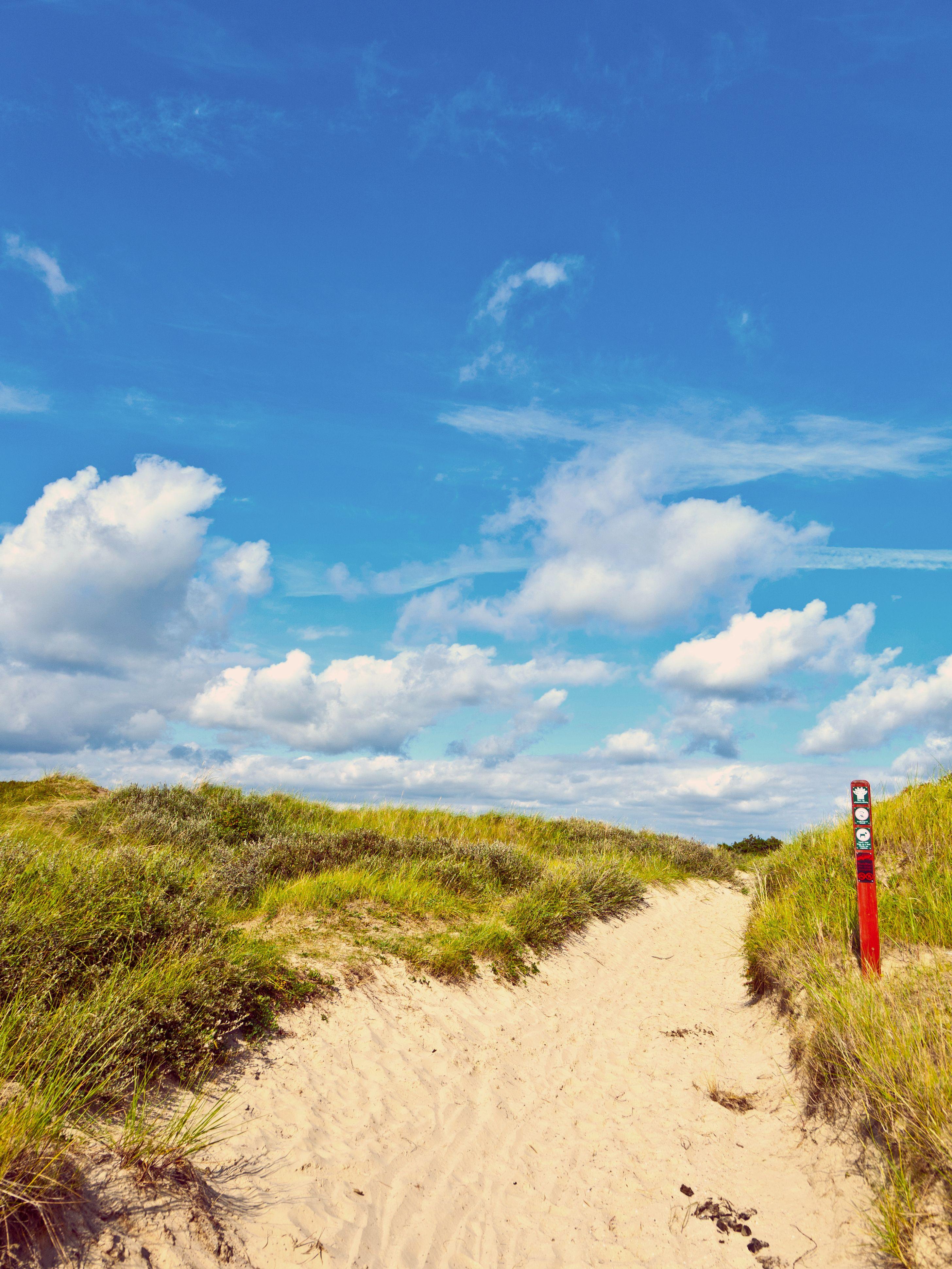 Dünenpfad Henne Strand Dänemark Dünen Küste Nordsee Strand Jütland Portfolio Pinterest