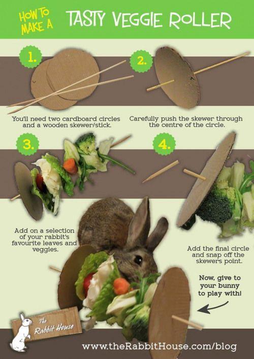 Knutselen voor je konijntjes zodat ze wat harder moeten werken voor hun eten! Dit is ook een leuke voor een groentenbrochette te maken vo... #rabbithouses