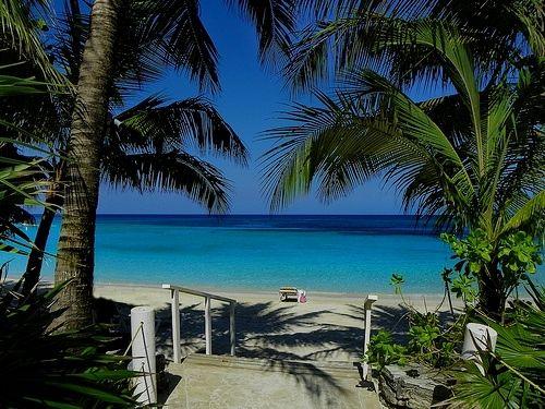 Add On's - Roatan Tours, Cruiseship Activities, Excursions ... |Roatan Carnival 2016
