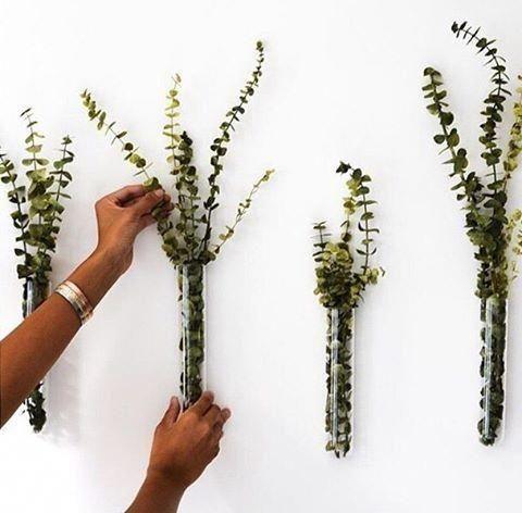 Photo of Beaker Glass Tube 8″ Wall Vase + Reviews