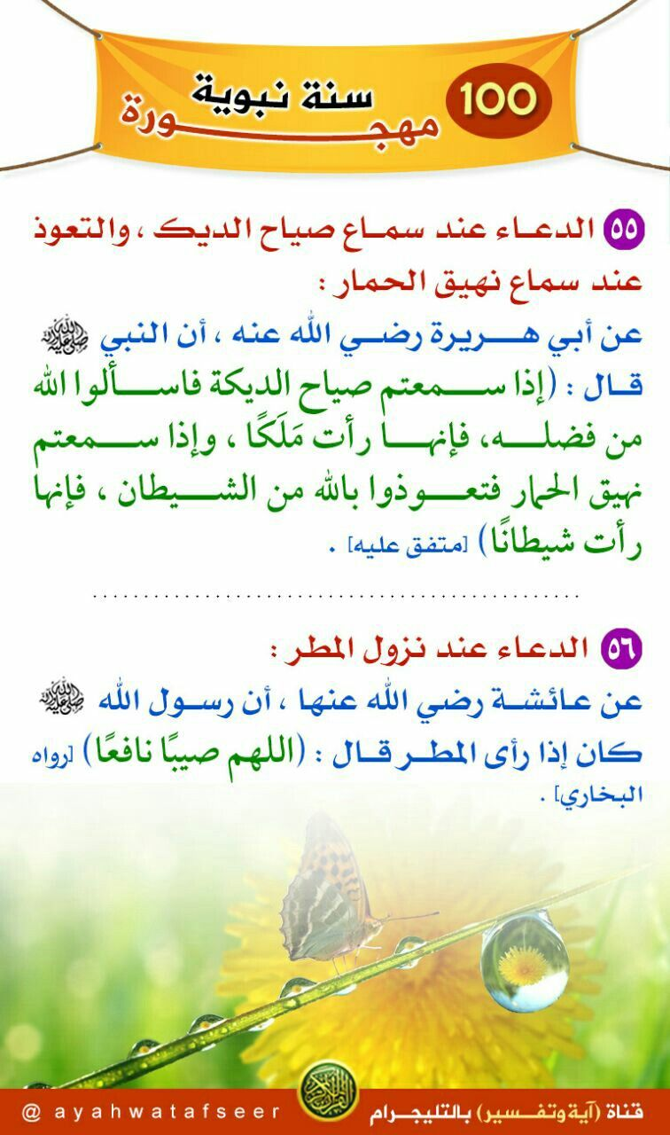 Pin By Mohamed Rashed On سلسلة سنن مهجورة Ahadith Islam Map