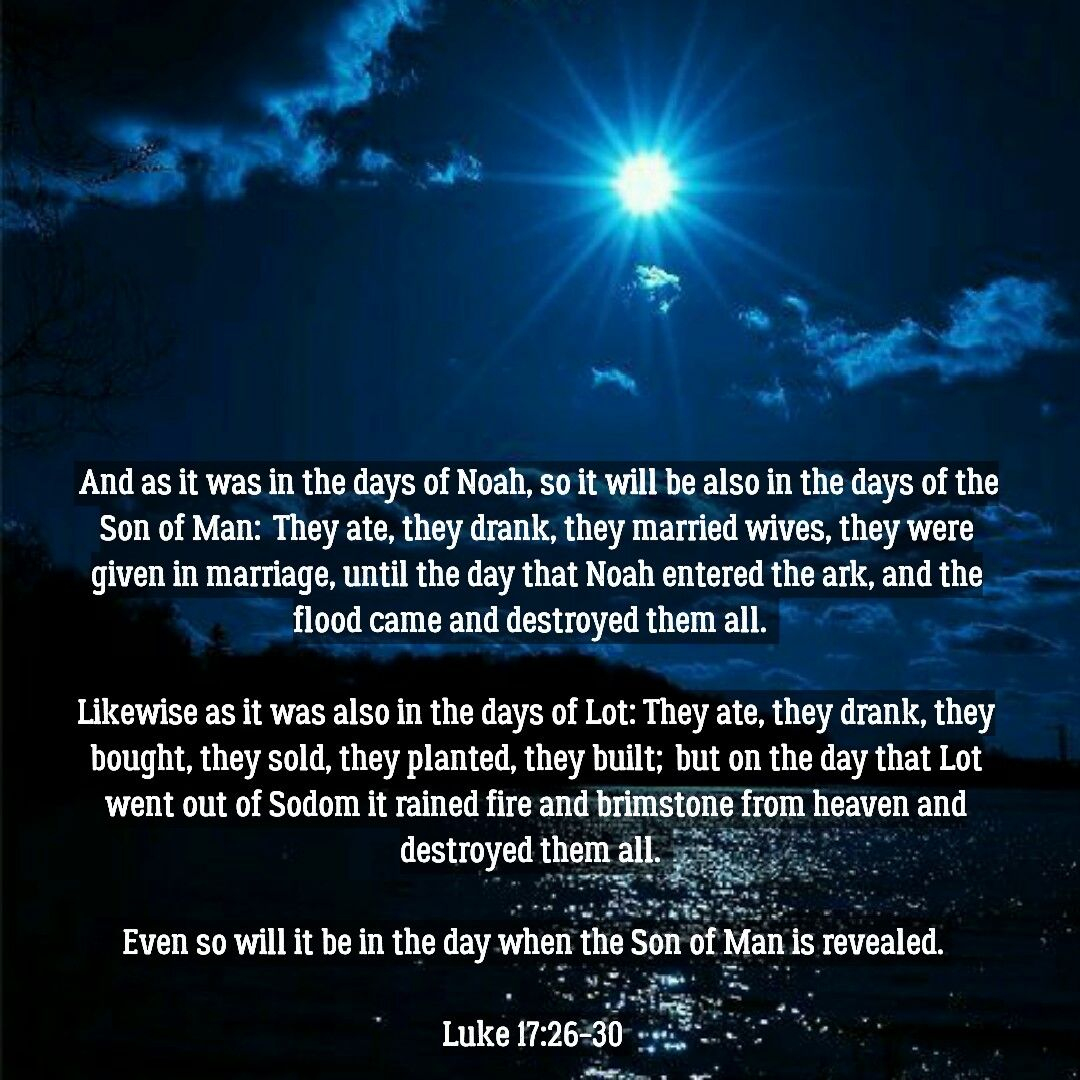 Image result for luke 17:26-30 kjv