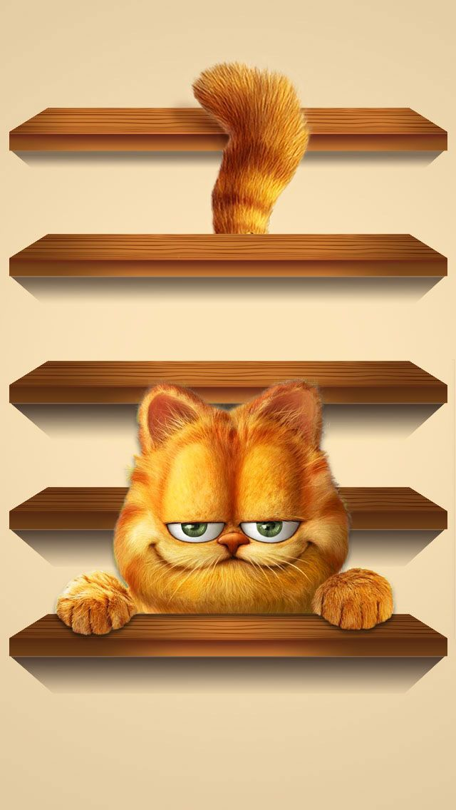 Shelves Wooden Black Cat Funny Cute Animals Ginger Garfield Omputer Graphics Homescreens HD IPhone 5 Wallpaper