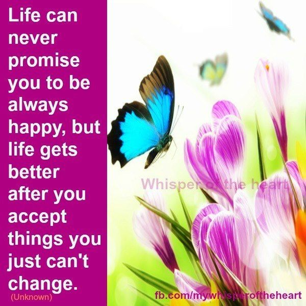 Accept Things You Cant Change Quote Via Whisper Of The Heart On