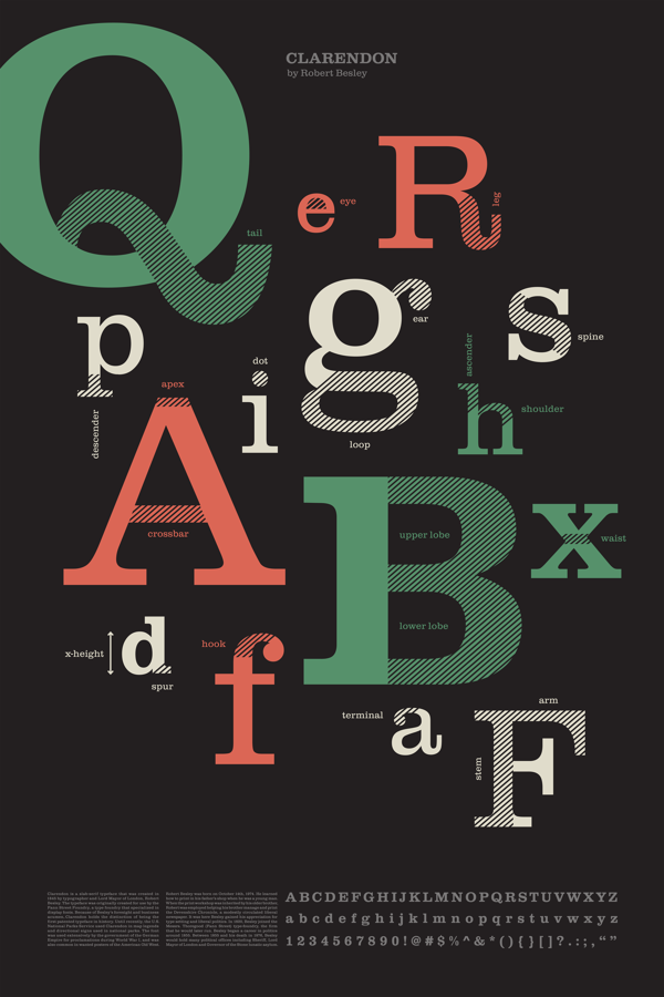 Anatomy of Type Poster on Behance | Clarendon Font Family ...
