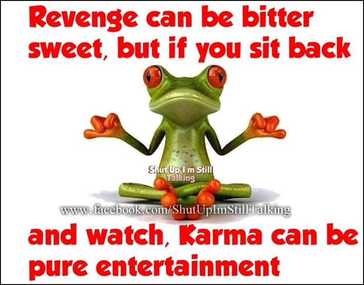I Am A True Believer Of What Goes Around Comes Around I Witnessed Someone Get His Comeuppance And It Was True Karma Frog Quotes Funny Frogs Bones Funny