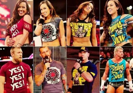 Aj Lee Wearing Daniel Bryan Cm Punk John Cena Dolph Ziggler T