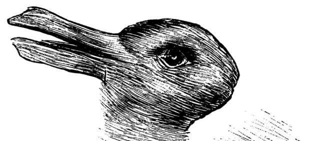 ¿Qué animal ves en esta imagen? El resultado puede revelar tu nivel de creatividad | m.20minutos.es
