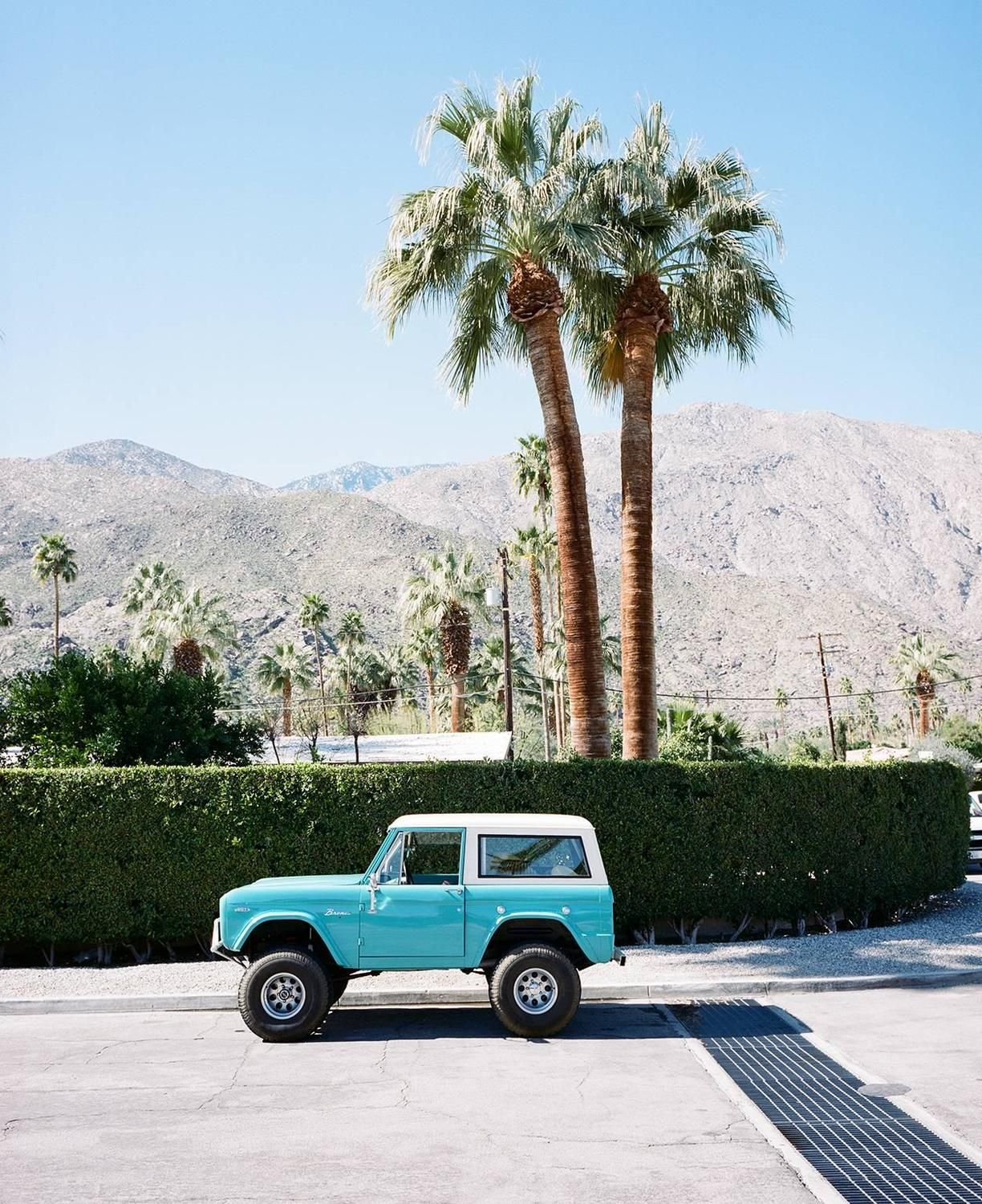 Color Photography at 1stdibs