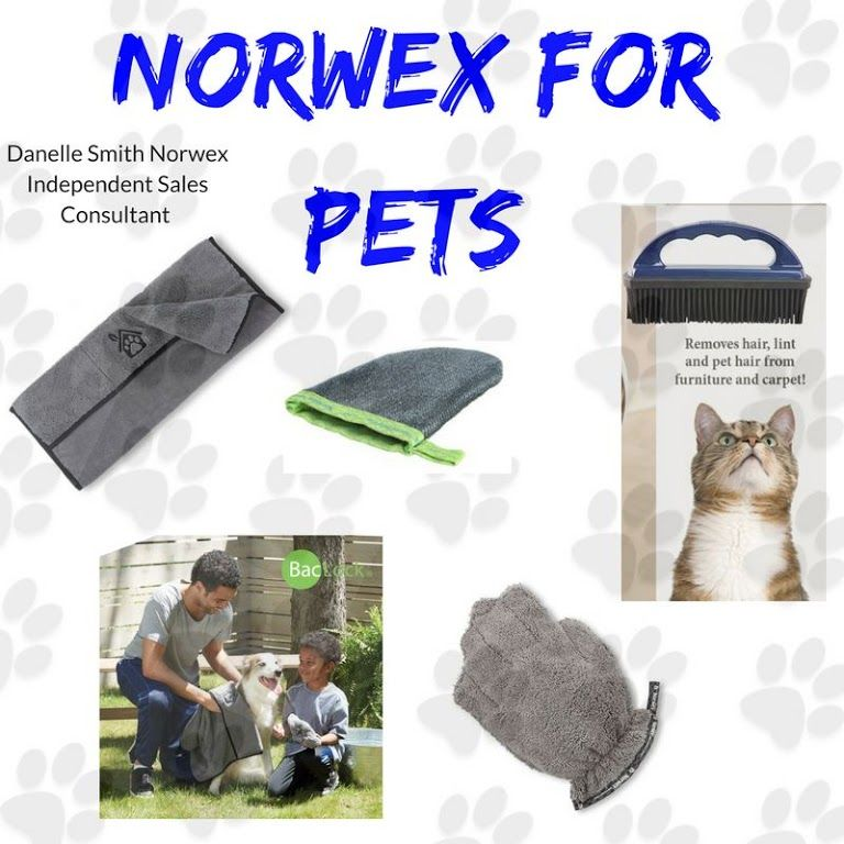 Healthy toys, food and treats for pets. Norwex cleaning