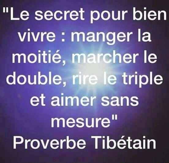 Proverbe Tibétain Citations Fun Frases