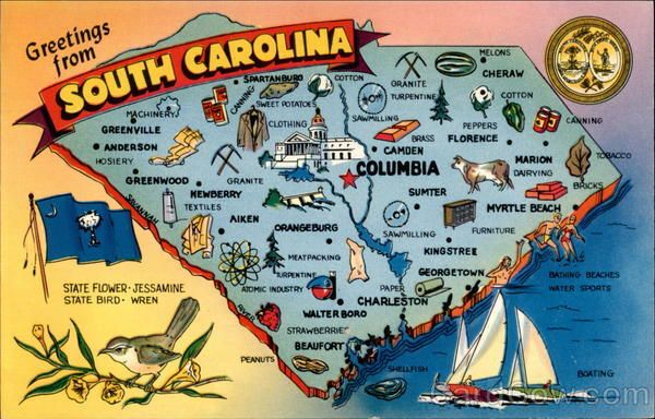 Greetings From South Carolina South Carolina Map Illustrated Map