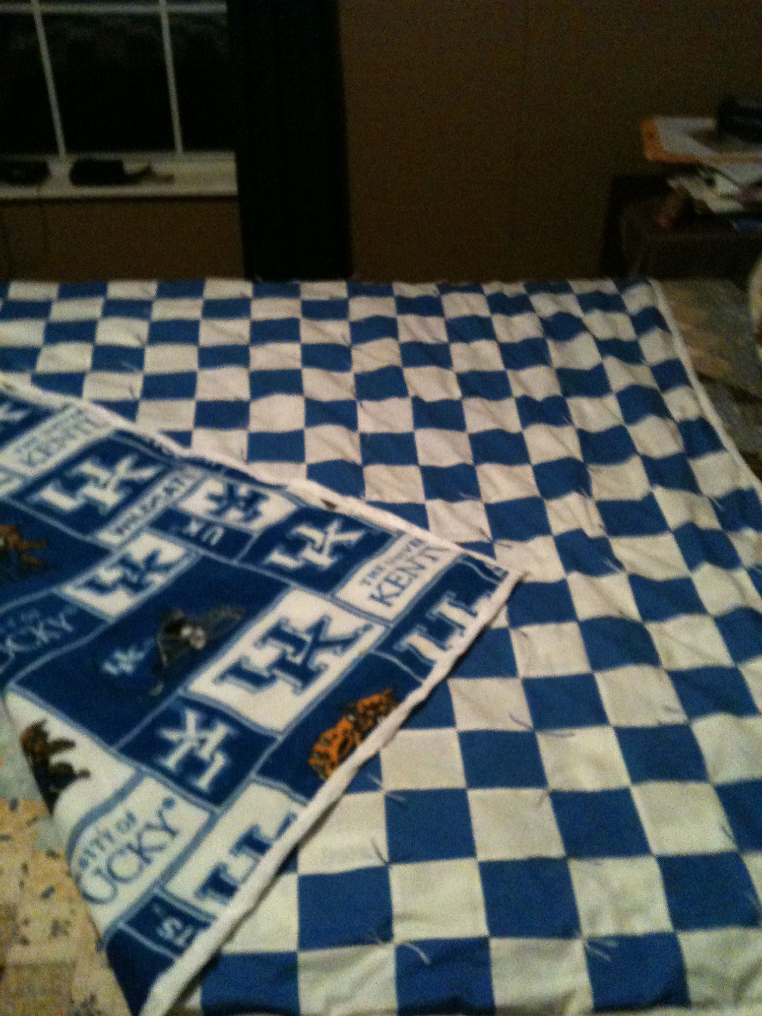 Kentucky Wildcat Quilt | Quilts | Pinterest | Kentucky : university of kentucky quilt - Adamdwight.com