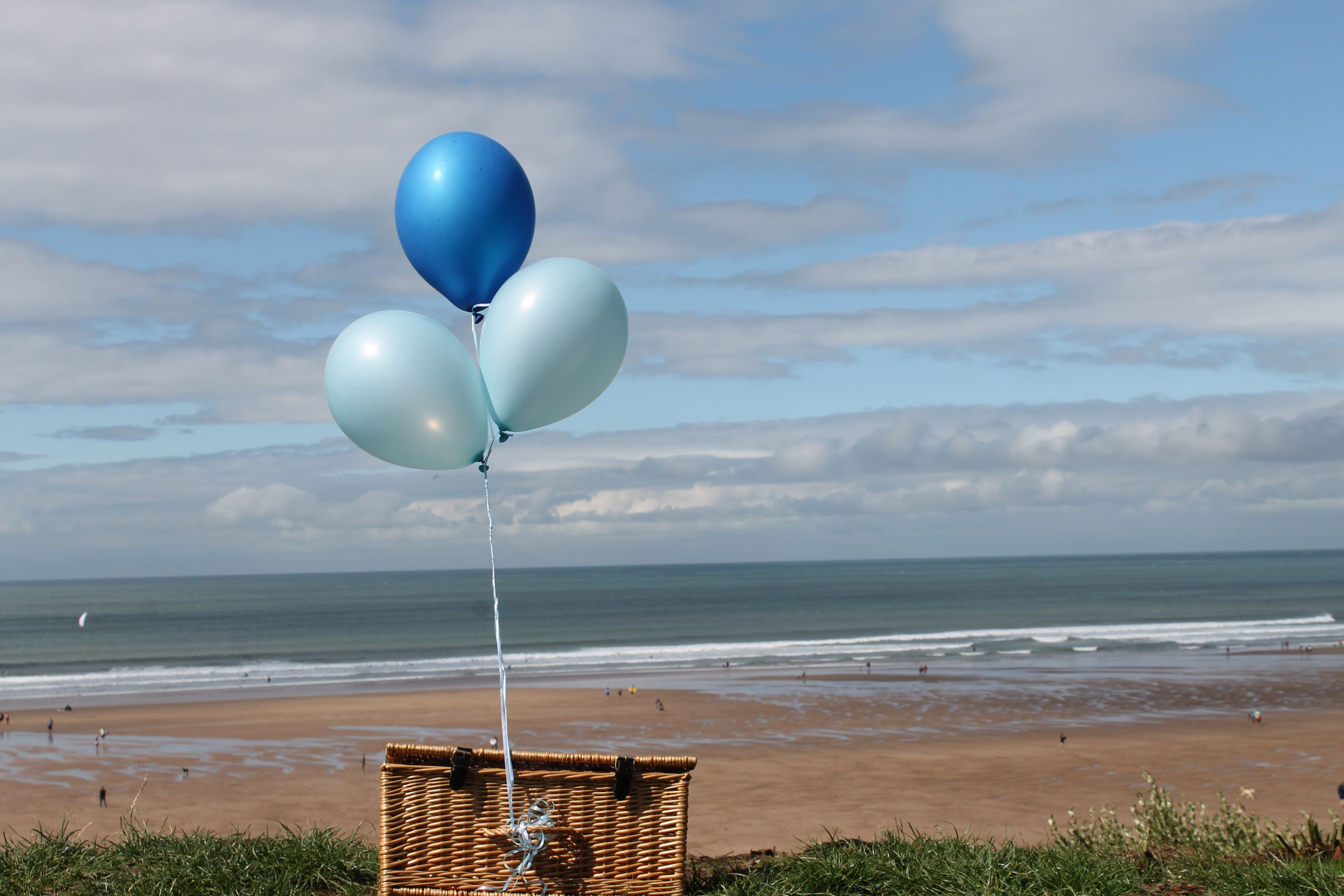 A first wedding anniversary picnic surprise date ideas pinterest